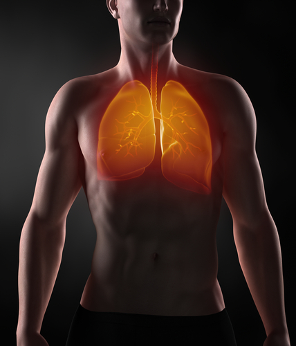Moffitt Develops PLA to Diagnose Lung Cancer