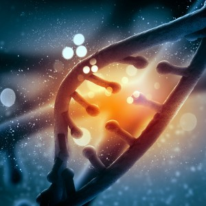 Some Lung Cancers with KRAS-Related Mutations Sensitive to Experimental Treatment